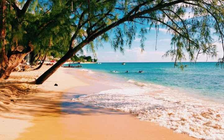 barbados-beach-xlarge